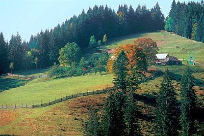 Krajobraz Mołdawii
