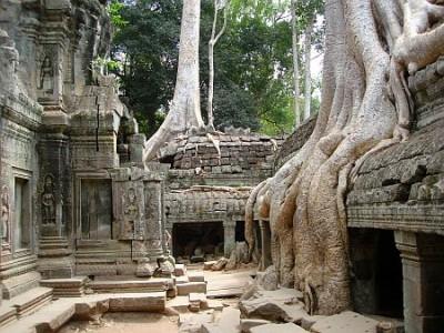 Świątynia Ta Prohm