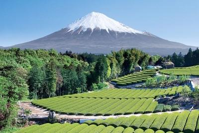 Japonia Fuji