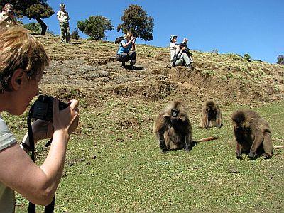 Etiopia. Dzelady