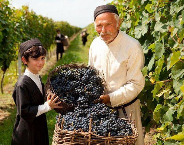 Gruziński ekspres: wino i góry