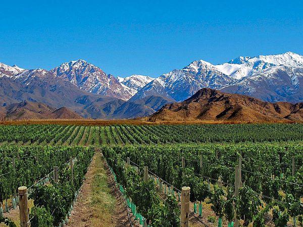 Mendoza – winnice Argentyny