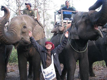 Słonie w Chitwan