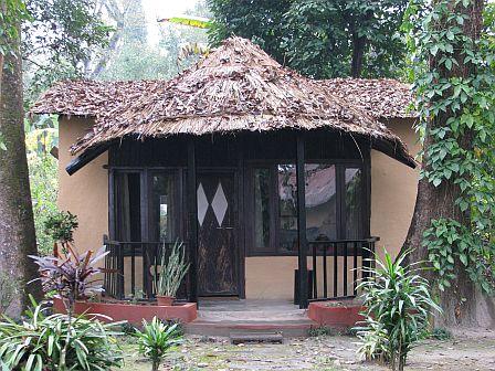 bungalowy w Chitwan