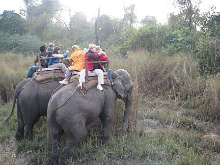 Safari na słoniach - Chitwan